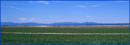 ASA Flying Field